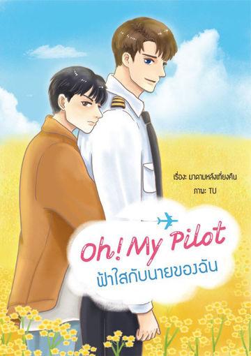 รูปภาพของ Oh My Pilot! ฟ้าใสกับนายของฉัน
